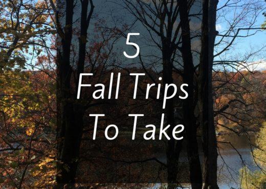 Fall trips